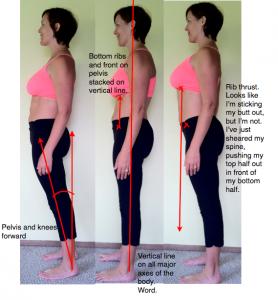 Katy Bowman alignment