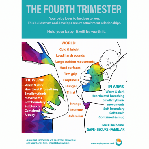 4th Trimester Poster