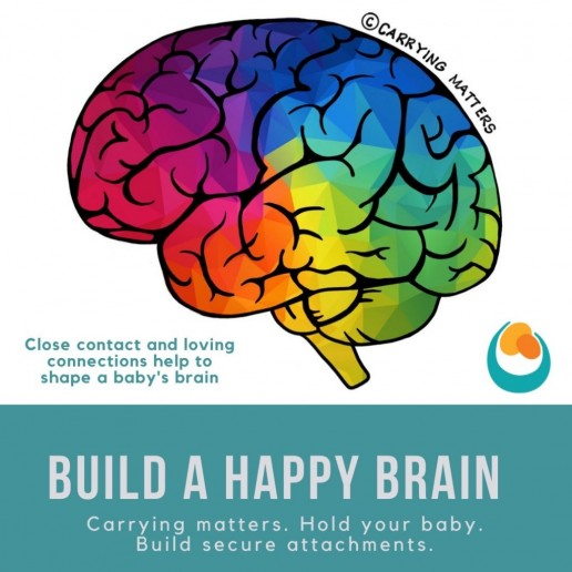 educational resources build a happy brain rainbow brain carrying matters